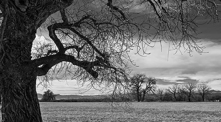 boulder-landscape-winter