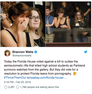 FL legislators act on porn, not guns